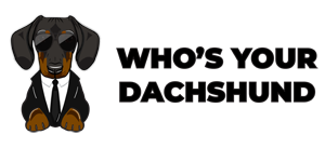 Who's Your Dachshund